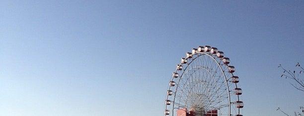 Suzuka Circuit is one of Formula 1 Tracks.