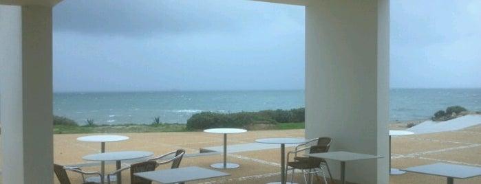Ponta do Sal is one of Katia : понравившиеся места.