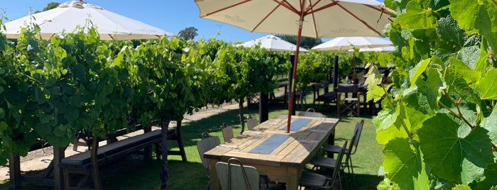 Saint Clair Family Estate Vineyard Kitchen is one of A week on New Zealand's South Island.