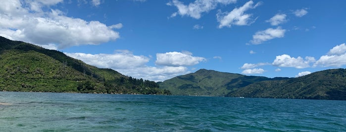 Queen Charlotte Sound - Tōtaranui is one of Best of NZ - South Island.