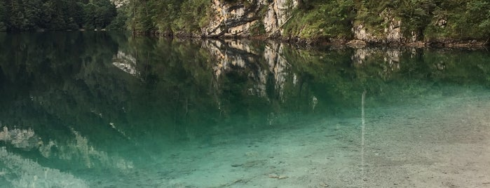 Lago di Tovel is one of สถานที่ที่ Nami ถูกใจ.