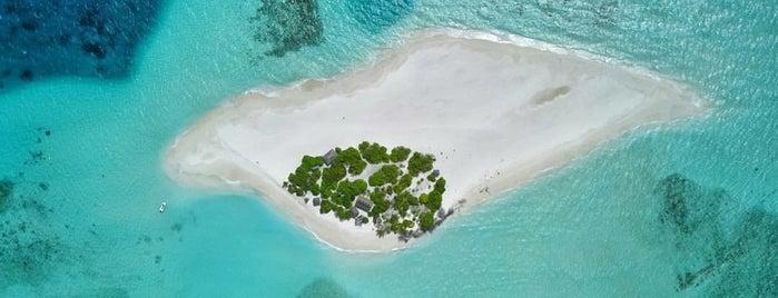 Maldives is one of Orte, die Виктория gefallen.
