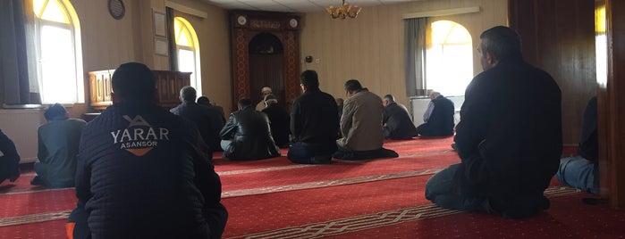 Mobilyacılar Camii is one of Konya Selçuklu 2 Mescit ve Camileri.