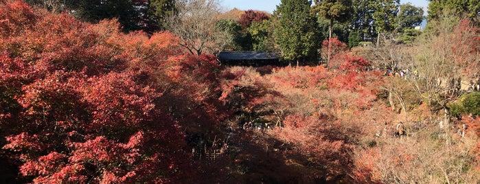 通天橋 is one of Kansai Trip.
