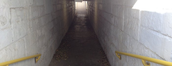Dundee Underpass is one of Lieux qui ont plu à Nicole.