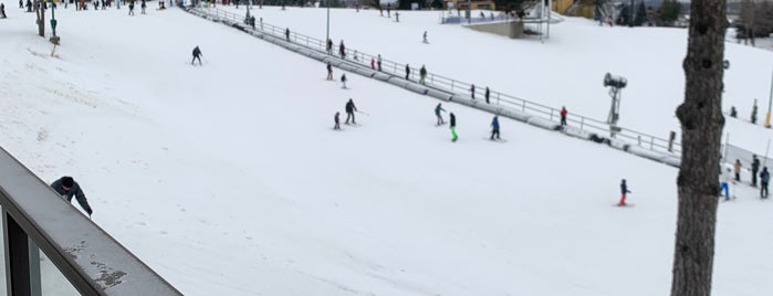 Chestnut Mountain Resort is one of Skiing.
