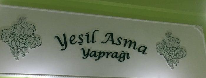 Yeşil Asma Yaprağı is one of Fethiye.