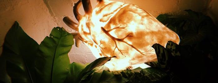 Art House México is one of Actividades.