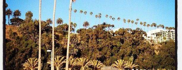 Sorrento Beach is one of LA.