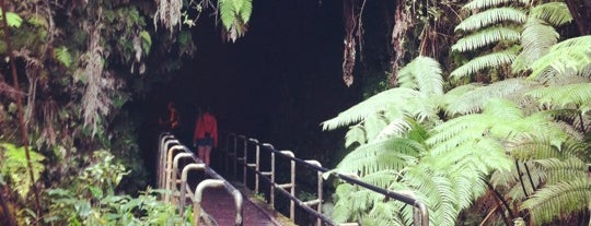 Thurston Lava Tube is one of Hawaii Trip 2013.