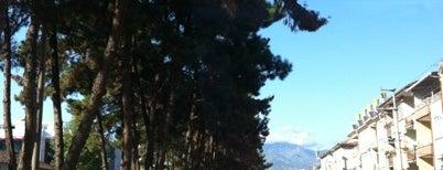 Erbaa is one of Posti salvati di Dyg.