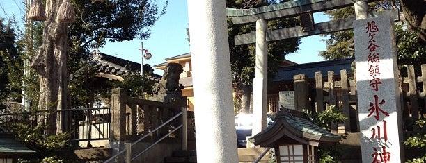 鳩ヶ谷氷川神社 is one of 神輿で訪れた場所-1.