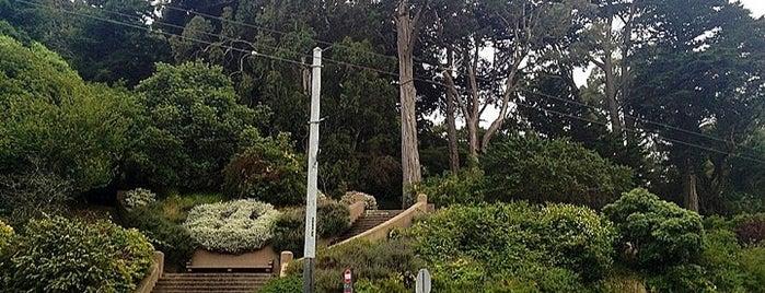 Buena Vista Park is one of San Francisco Bay.