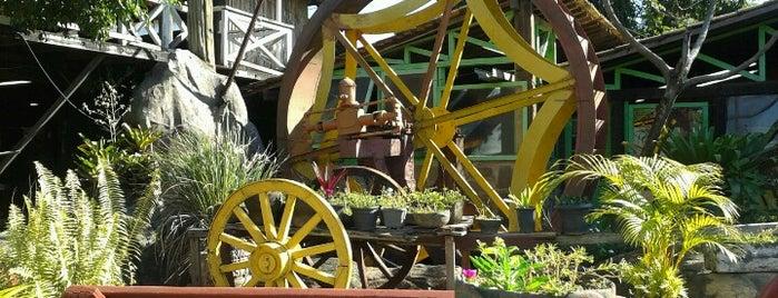 Dom Zelittu's Restaurante is one of สถานที่ที่บันทึกไว้ของ Fernando Fernandez.