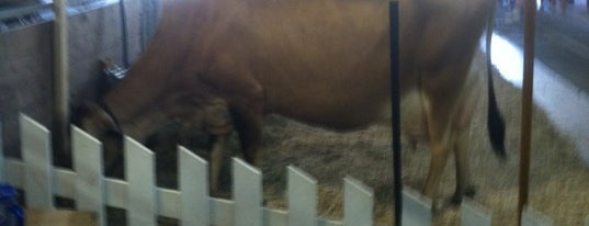 Cattle Barn is one of Meredithさんのお気に入りスポット.