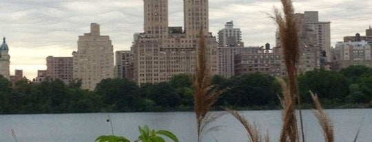 Jacqueline Kennedy Onassis Reservoir is one of Experience Central Park on The Mark Bikes.