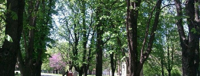 Парк на възрожденците is one of Ruse.