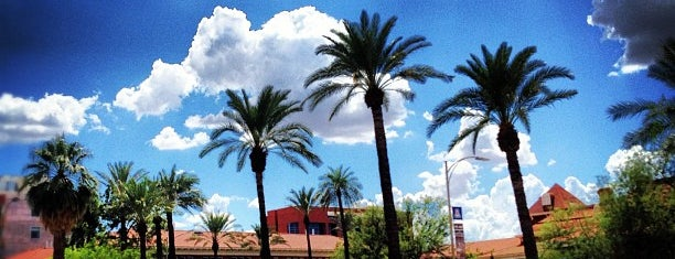 アリゾナ大学 is one of Tucson Arizona.