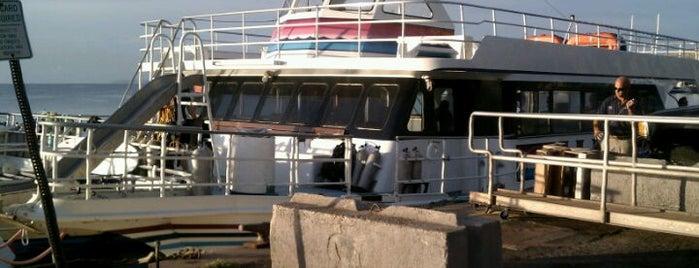 Best Maui Tour Boats