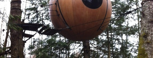Free Spirit Spheres is one of if you're ever in ____.