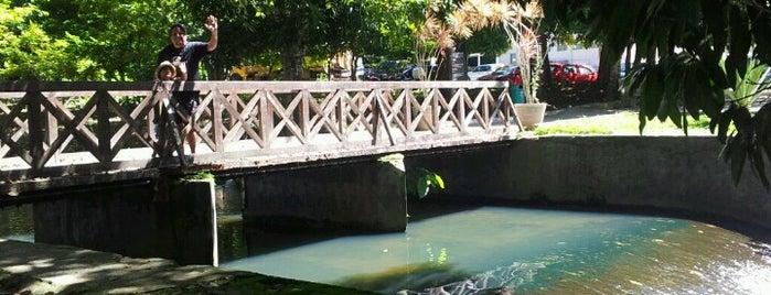 Jardim Botânico Benjamin Maranhão is one of JP depois do banho de mar.