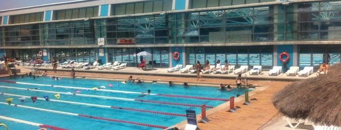 Club Natació Terrassa is one of My Places.
