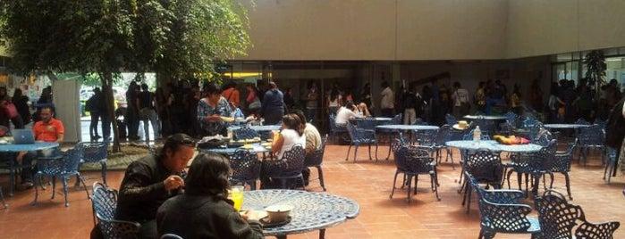 UAM Xochimilco Edif. C Cafetería is one of Chan 님이 좋아한 장소.