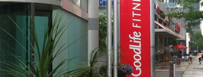GoodLife Fitness North York Madison Centre is one of สถานที่ที่ Paul ถูกใจ.