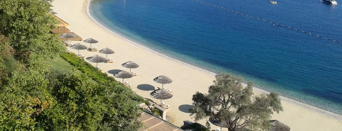 Assaggio is one of Bodrum.