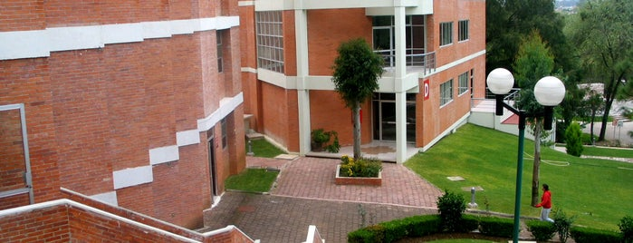 Universidad Latina de America is one of Lieux qui ont plu à Nath.
