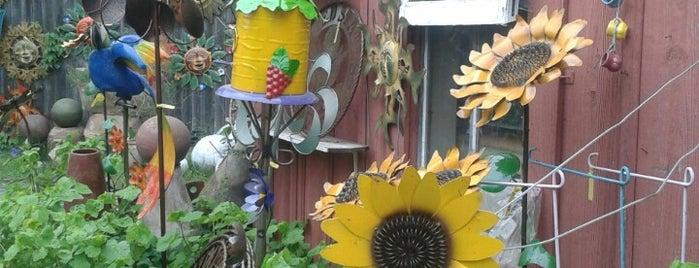 Gruene Gardens is one of Posti che sono piaciuti a Rita.