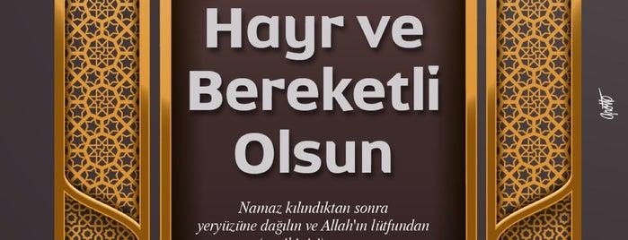 Hz. Halid Camii is one of Konya Meram Mescit ve Camileri.