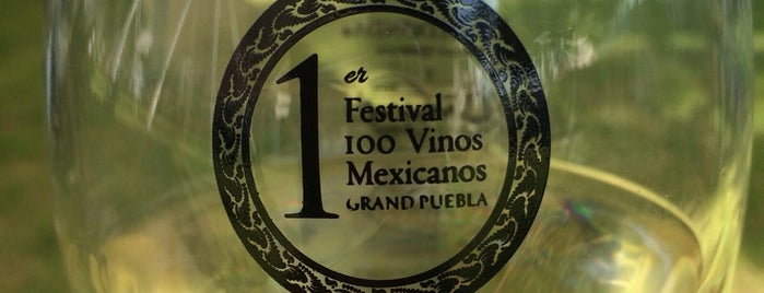 Festival 100 Vinos Mexicanos is one of Locais curtidos por Emilio.