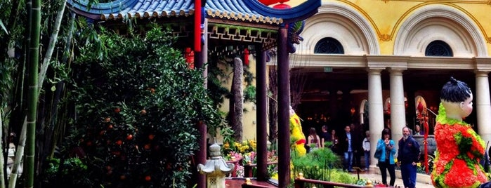 Bellagio Conservatory & Botanical Gardens is one of Traveliveryさんのお気に入りスポット.
