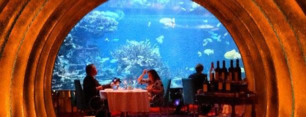 Al Mahara Seafood Restaurant is one of Lugares guardados de Queen.