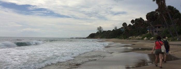 Treasure Beach is one of Lugares guardados de Rex.