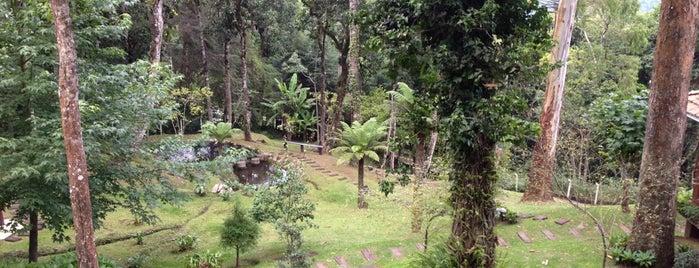 Chácara São Francisco is one of Tempat yang Disukai Paula.