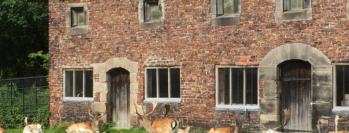 Dunham Massey Visitor Centre is one of Carlさんのお気に入りスポット.