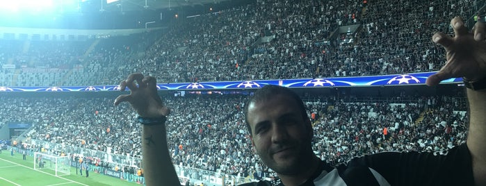Vodafone Park is one of Locais curtidos por İlgin.