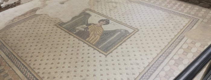 Haleplibahçe Mozaik Müzesi is one of Önder : понравившиеся места.