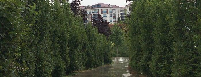Yaşam Vadisi is one of Tempat yang Disukai Yeşim.