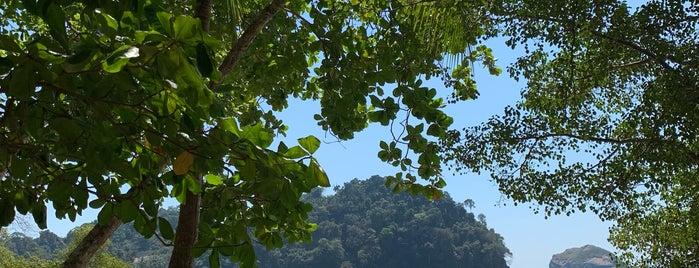 Playa Espadilla Norte is one of Todo in Costa Rica.