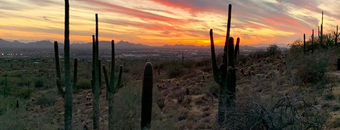 McDowell Sonoran Preserve Gateway Trailhead is one of Arizona.