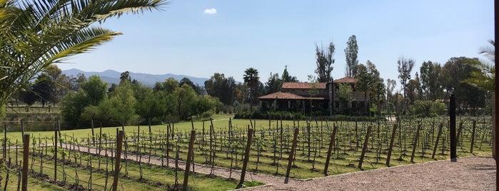 San Lucas hotel y spa is one of Tempat yang Disukai Sergio M. 🇲🇽🇧🇷🇱🇷.