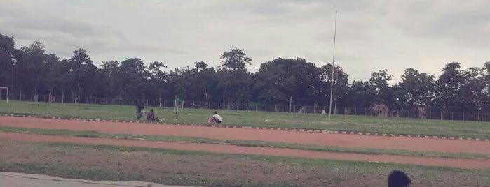 Banyuwangi Sports