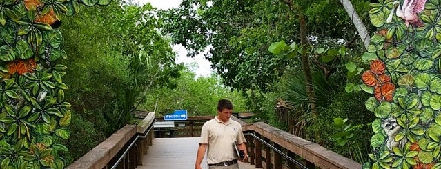 """J.N. """"Ding"""" Darling National Wildlife Refuge is one of Florida with Family."""