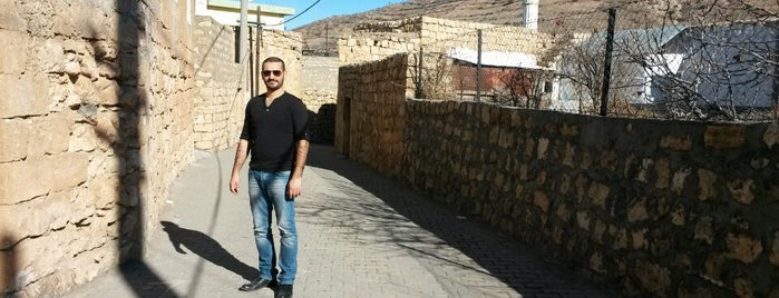 Mardin-Midyat yolu is one of Pelin 님이 좋아한 장소.