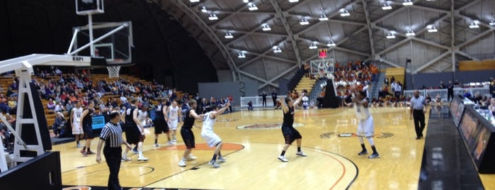 Jadwin Gymnasium is one of NCAA Division I Basketball Arenas/Venues.