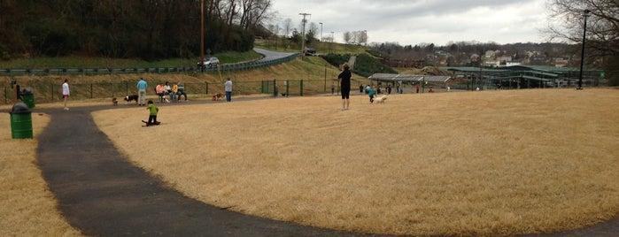 Concord PetSafe Dog Park is one of Orte, die Michiyo gefallen.