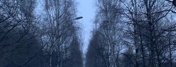 Парк Шкулева is one of Tempat yang Disukai Jano.
